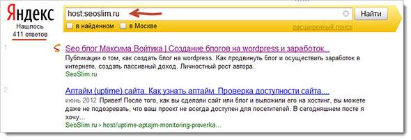 Команда host в Яндекс