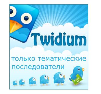 программа Twidium