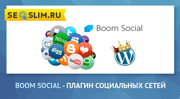 Плагин социальных сетей для WordPress