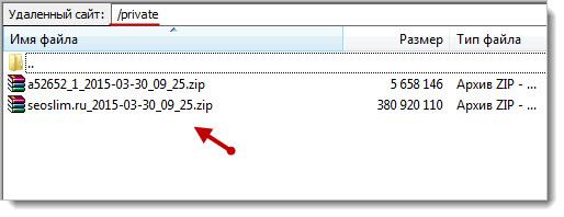 файлы с копией сайта и mysql