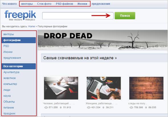 поиск картинок на Freepik