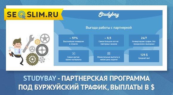 Studybay - партнерка по студенческому англоязычному трафику