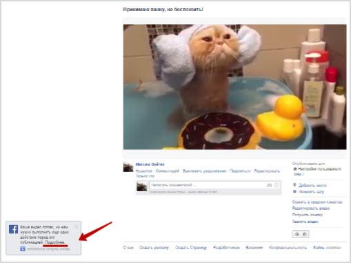 загруженное видео в Фейсбук аккаунт
