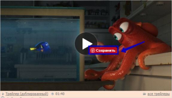 пины с видео
