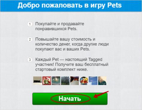 пример игры Pets от социалки