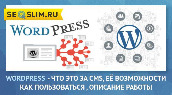 Что такое WordPress CMS