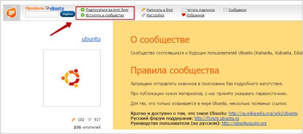 информация по блогу