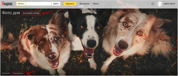 фото дня в Яндексе