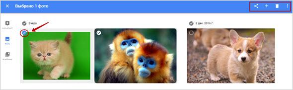 инструменты страницы фоток в гугле