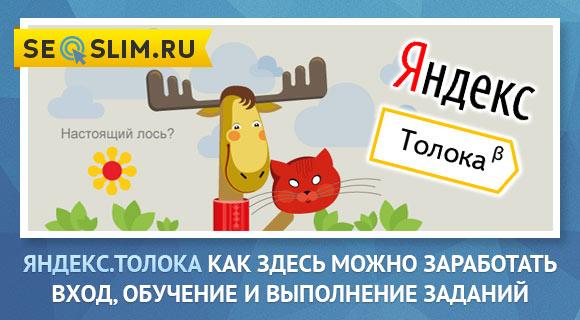 Что такое Яндекс.Толока и как на этом зарабатывать