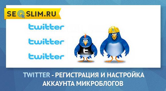 Что такое твиттер на русском языке?