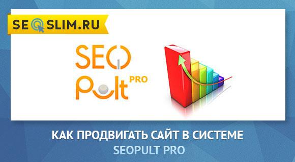 Продвижение сайта в SeoPult Pro