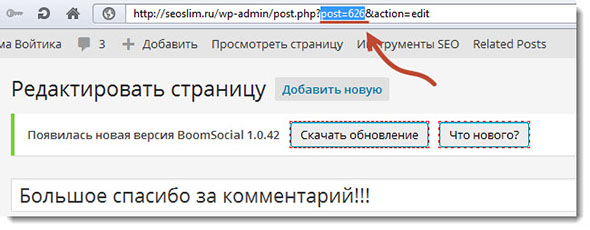 Как узнать ID страницы в wordpress
