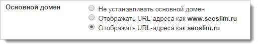 Основной домен