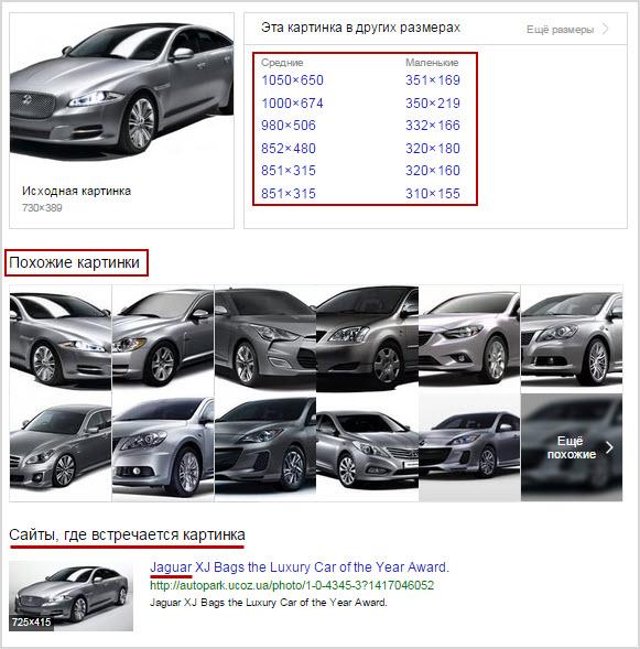 пример выдачи поиска по картинке от Яндекса