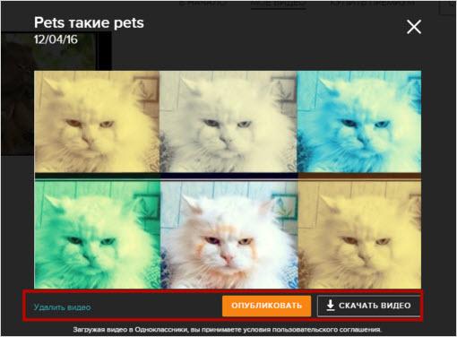 работа с созданным файлом видео в ок.ру