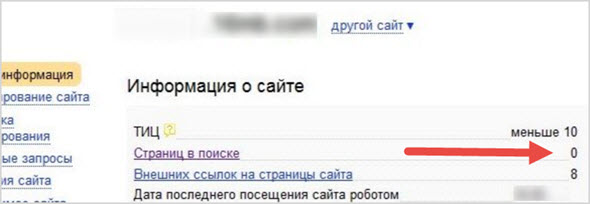 страниц в поиске Яндекс 0