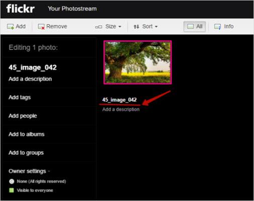 загрузка фото через проводник Flickr