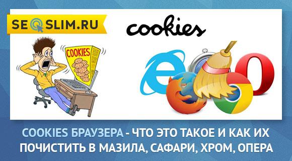 Что такое Куки в браузере