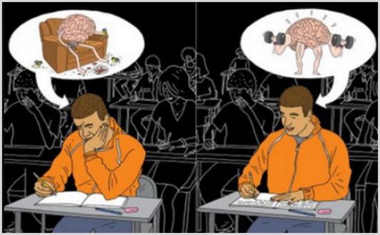 Как работает мозг до и после